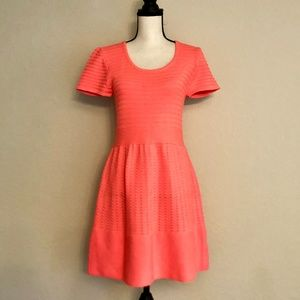 Miami Crocheted Hot Pink Skater Dress Size Large